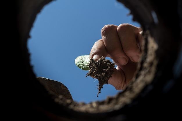 Трудолюбивая рука, возделывающая сад, вид изнутри земли