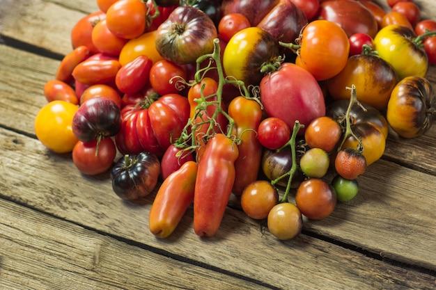 トマトの収穫。有機緑、赤、黄色、オレンジ色のトマト。フレッシュでカラフルなトマトのバラエティ。トマトのさまざまな品種。
