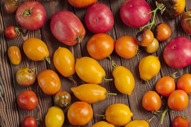 トマトの収穫。有機緑、赤、黄色、オレンジ色のトマト