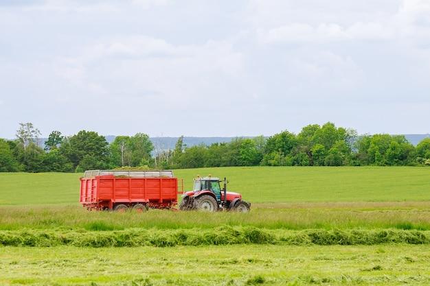 수확기는 운송을 위해 트랙터 트레일러에서 갓 자른 풀을 수집합니다. 건초 만들기.