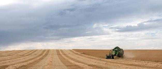 Комбайн убирает пшеницу в поле. сельское хозяйство, агрономия и подготовка зерна