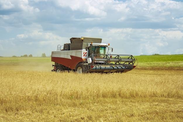 Комбайн движется по полю с зерновыми культурами.
