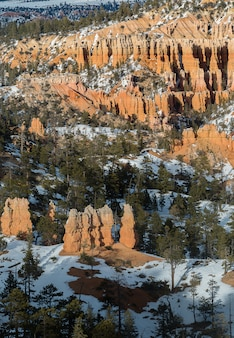 冬の間にユタ州のブライスキャニオンのhoodoos