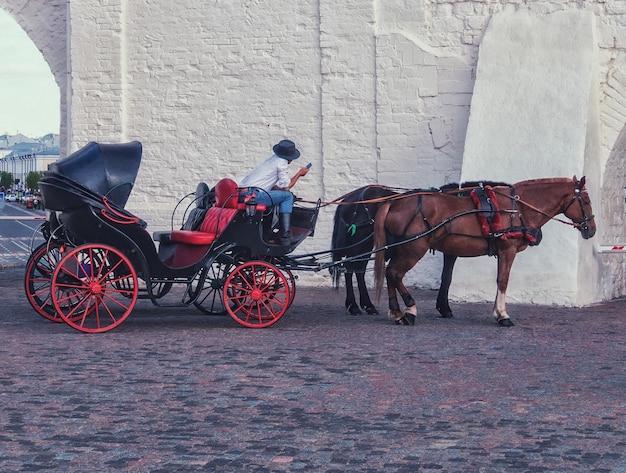 Лошадь и красивая старинная карета