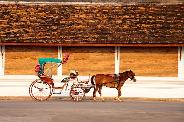 Конный экипаж в лампанге в ват пхра та лампанг луанг, провинция лампанг в лампанге