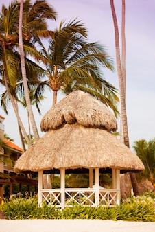 Территория отеля с пальмами на пляже. вид на море.