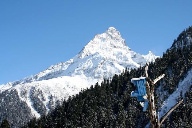 Домик для птиц в горах