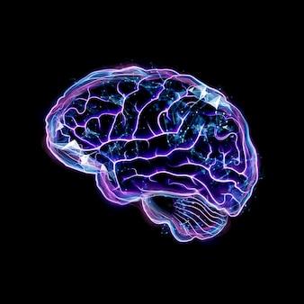 Образ человеческого мозга