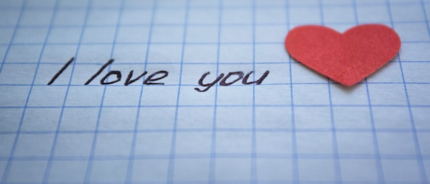 私はあなたを愛している碑文と市松模様の紙の側面図の赤いハート