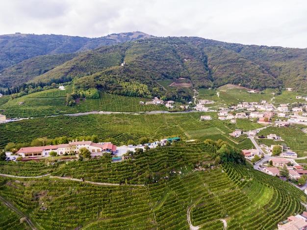 Итальянская деревня с высоты птичьего полета усажена виноградом. итальянская деревня сверху.