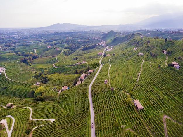 새의 비행 높이에서 이탈리아 마을은 포도로 자리 잡고 있습니다