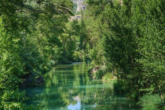 Castilla la mancha spain의 cuenca시를 통과하는 jucar 강은 화창한 날 강변 나무로 둘러싸인 녹색 물로 흐릅니다.