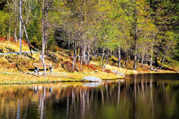 公園の湖岸と古いベンチ