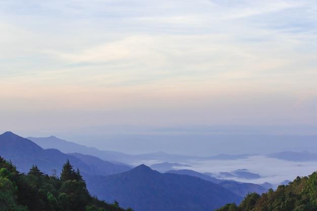 霧のある山の朝の風景が森を覆っています。