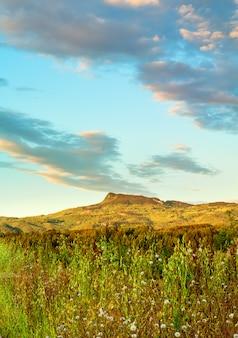 トスカーナの田園地帯の風景
