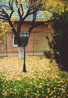 Лужайка во дворе частного дома покрыта осенней листвой. садовый фонарь украшает центральную часть двора.