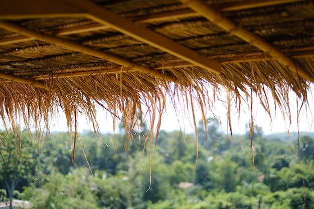 緑の山の背景を持つ葉の屋根