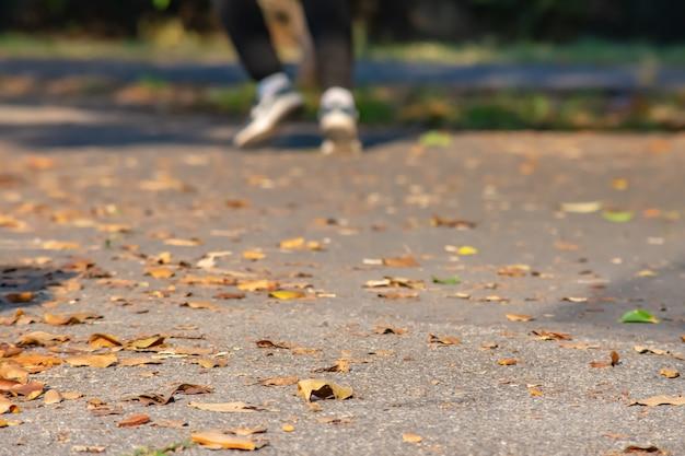Листья на резиновом асфальте для бега по шоссе и размытие ног бегуна, упражнения.