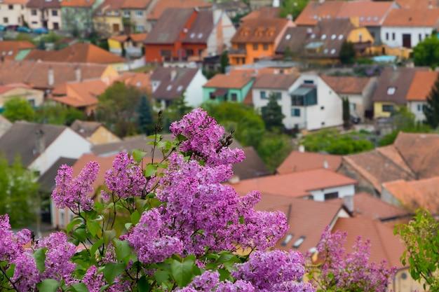На переднем плане цветущий куст сирени. многие крыши домов в расфокусированном виде