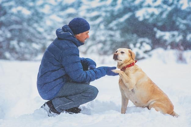겨울에 눈 덮인 소나무에 앉아 개를 가진 남자. 훈련 된 래브라도 리트리버 강아지는 발을 남자에게 확장합니다.