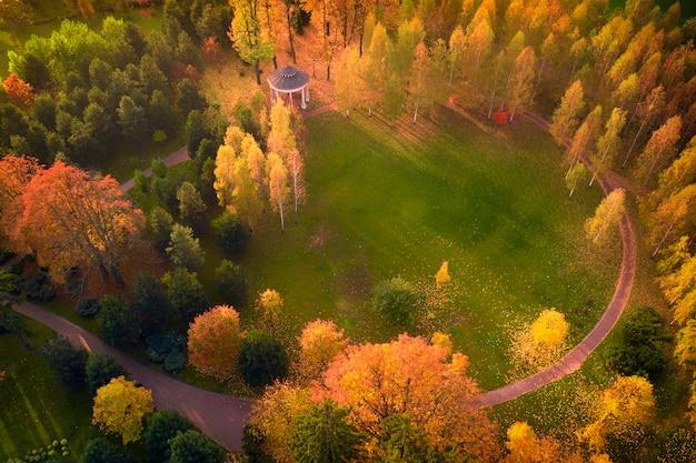 Луг окружен желто-зелеными деревьями, осенним пейзажем. вид с дрона.