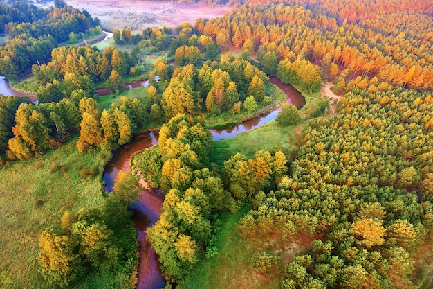 Извилистый речной лес вид с высоты