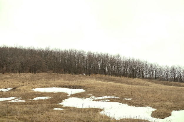 초봄의 들판에 녹는 눈