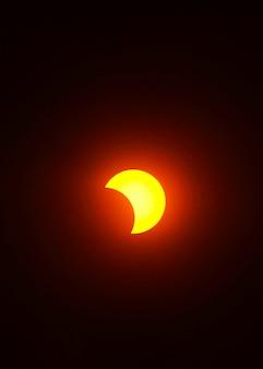Луна покрывает солнце веткой тени частичного затмения.