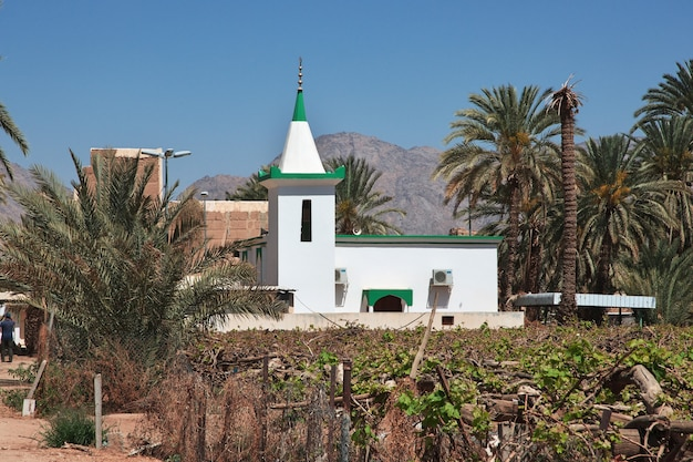 サウジアラビア、アシル地域、ナジュラーンに近いアラブの村のモスク