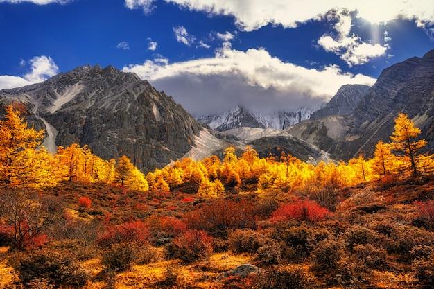 Гора в осенний сезон в заповеднике ядин, округ даочэн, провинция сычуань