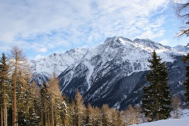 雪の中の山、雲のある空、雪に覆われたトウヒ