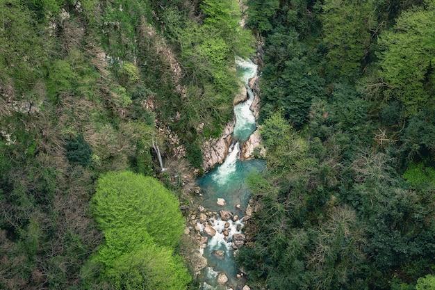 ジョージア州オカッセ渓谷の山川。水の信じられないほどの緑色
