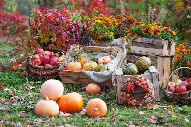 木製の箱でわらの上に横たわるマルチカラーのカボチャ秋の時間
