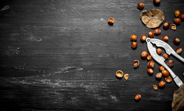 Щелкунчик с фундуком и сушеными листьями. на черном деревянном столе.