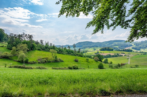 ドイツのオーデンヴァルトは純粋な自然です