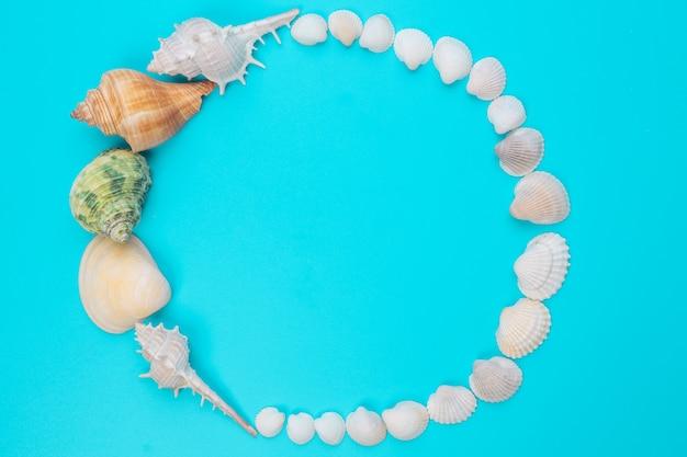 貝殻の額縁を青に配置します。