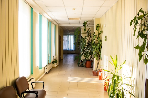 大きな窓からの光があふれるオフィスホール緑豊かなオフィススペース