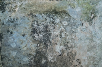 The old concrete floor.