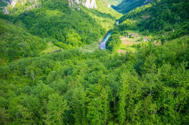 몬테네그로 북부의 djurdjevic 다리에서 풍경이 열립니다.