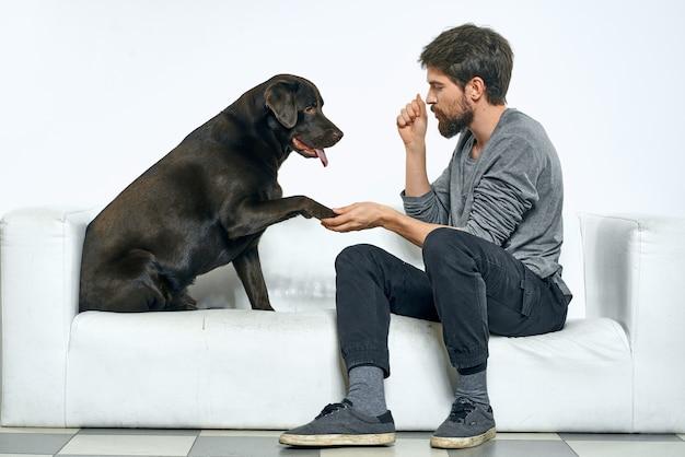 飼い主は白いソファーの上で犬と遊んでいます。