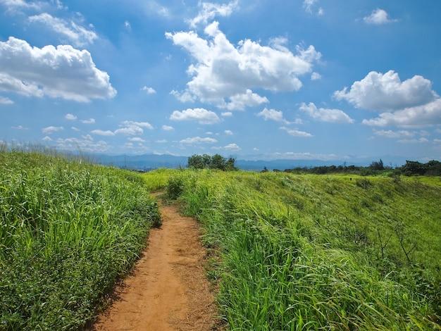 Путь в горах с зелеными долинами и красивым закатом под голубым небом