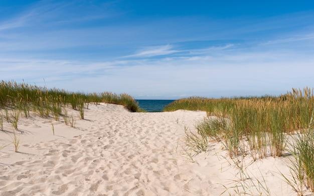 Путь к летнему пляжу. маршрут по песчаному берегу ведет к солнечному летнему горизонту балтийского моря.