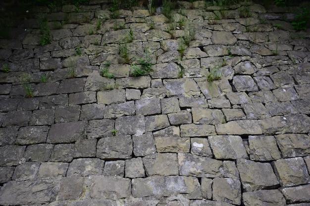Тротуар выложен булыжником разного размера и формы, через который в верхней части каркаса прорастает трава.