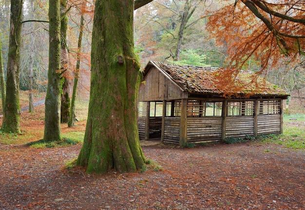秋の公園のピクニックシェルター