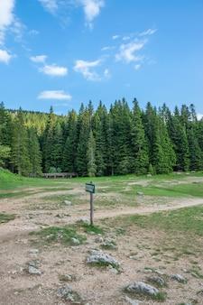 山の中でドゥルミトル国立公園の美しいブラックレイク
