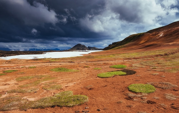 그림 같은 풍경 숲과 아이슬란드의 산