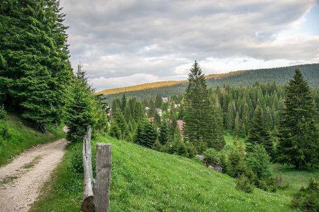 絵のような村は針葉樹の山の森にあります