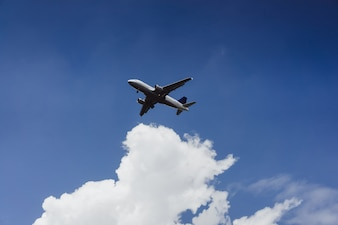 The plane is flying in the blue sky