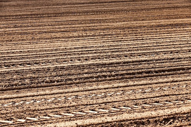 곡물을 재배하기 위한 쟁기질한 토양, 시비되어 많은 작물을 얻을 수 있는 고품질의 비옥한 토양의 밭