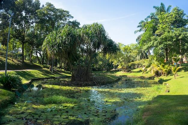 クアラルンプールのセントラルパークにある池
